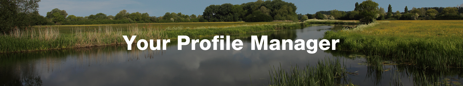 your profile manager