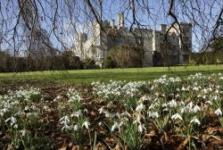 Snowdrops, surprises and stunning architecture
